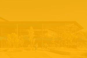 Hillbrook Yellow Divider