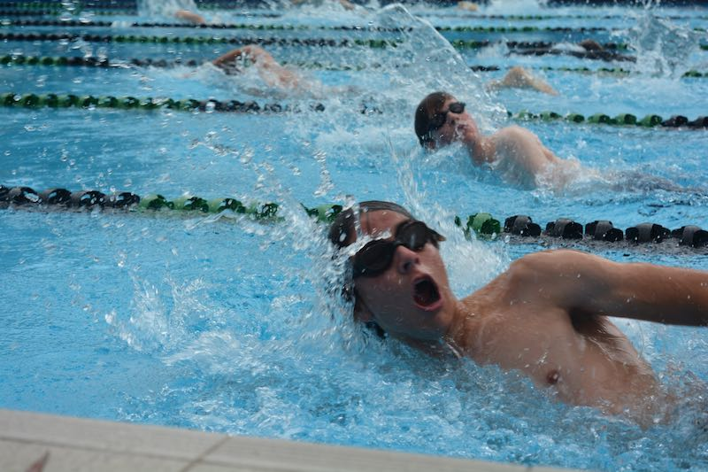 Hillbrook Swimming Carnival